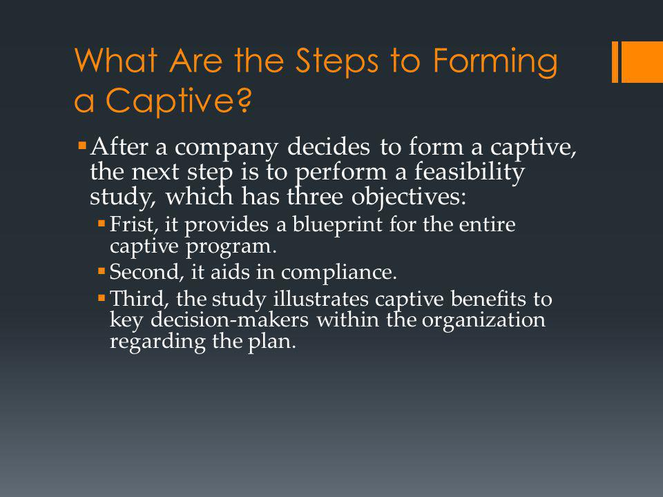 What Are the Steps to Forming a Captive