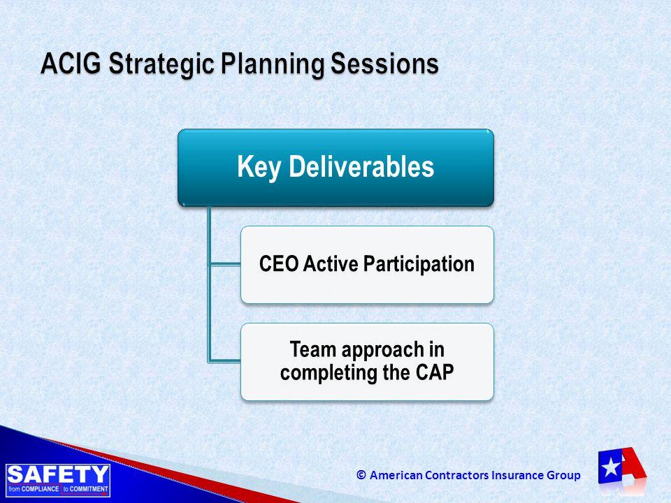 ACIG Strategic Planning Sessions