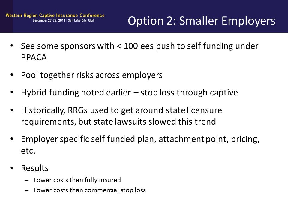 Option 2: Smaller Employers