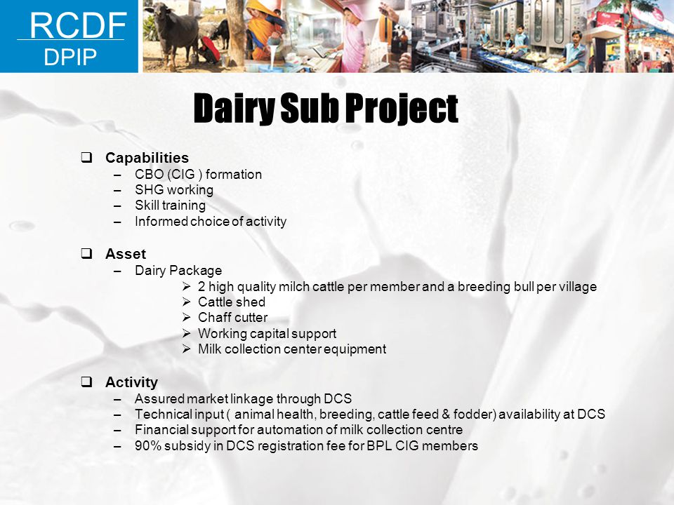 Dairy Sub Project RCDF DPIP Capabilities Asset Activity