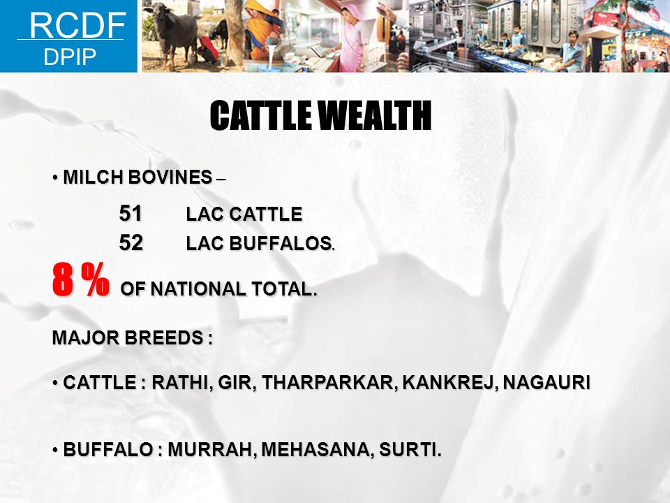 8 % OF NATIONAL TOTAL. CATTLE WEALTH RCDF 51 LAC CATTLE DPIP