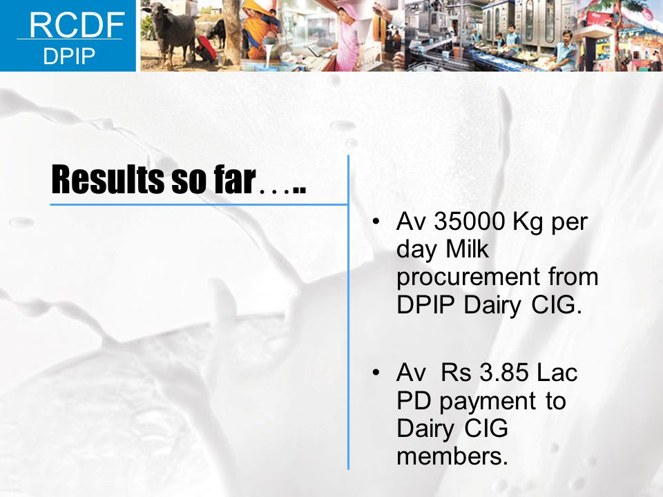 RCDF DPIP. Results so far….. Av 35000 Kg per day Milk procurement from DPIP Dairy CIG.