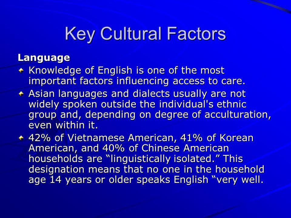 Key Cultural Factors Language