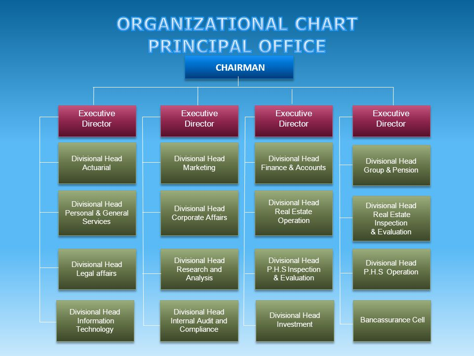 ORGANIZATIONAL CHART PRINCIPAL OFFICE
