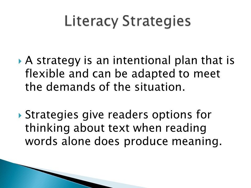 Literacy Strategies A strategy is an intentional plan that is flexible and can be adapted to meet the demands of the situation.