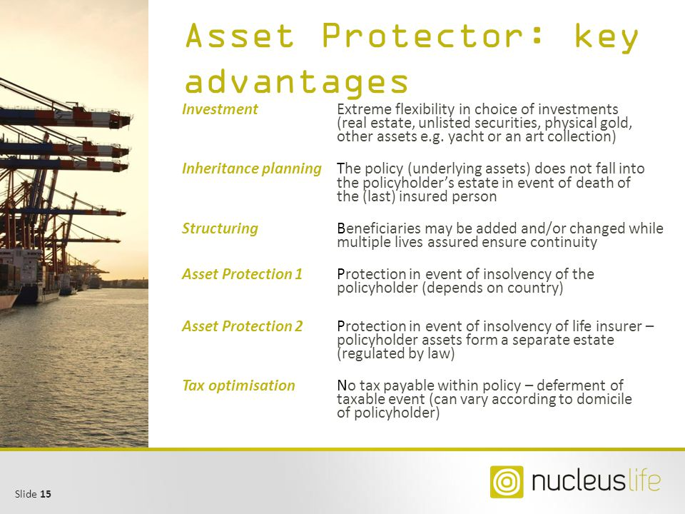 Asset Protector: key advantages