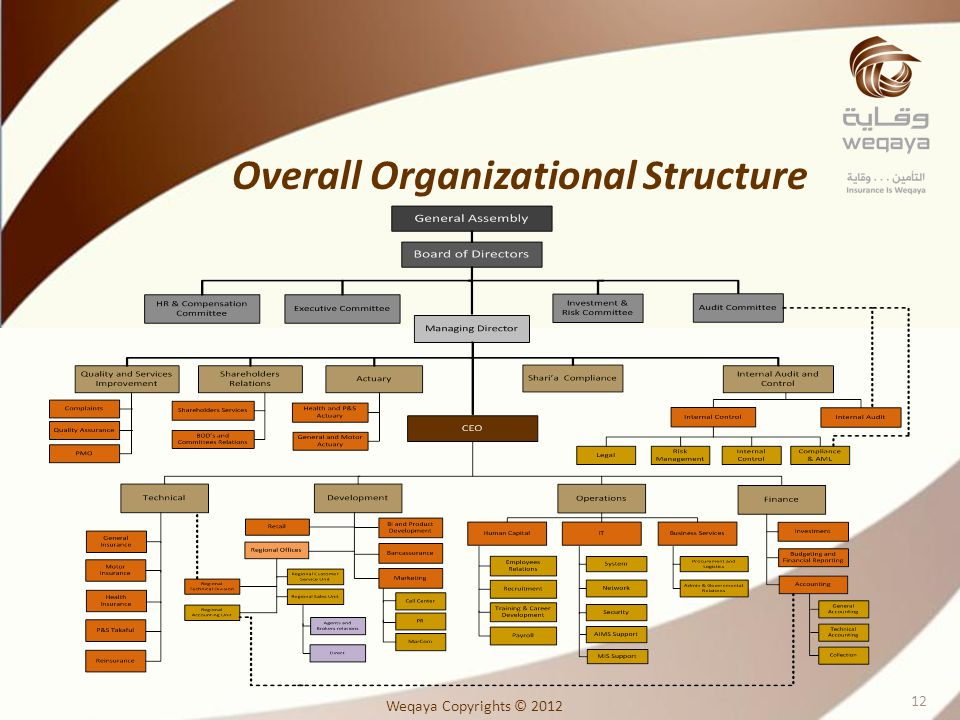 Overall Organizational Structure