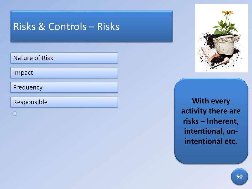 Risks & Controls – Risks