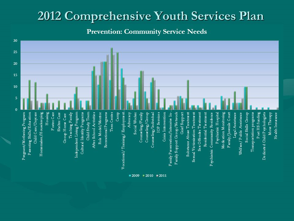 2012 Comprehensive Youth Services Plan