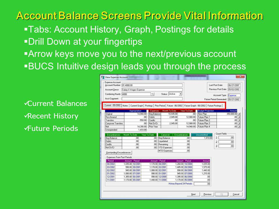 Account Balance Screens Provide Vital Information