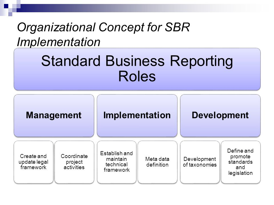 Organizational Concept for SBR Implementation