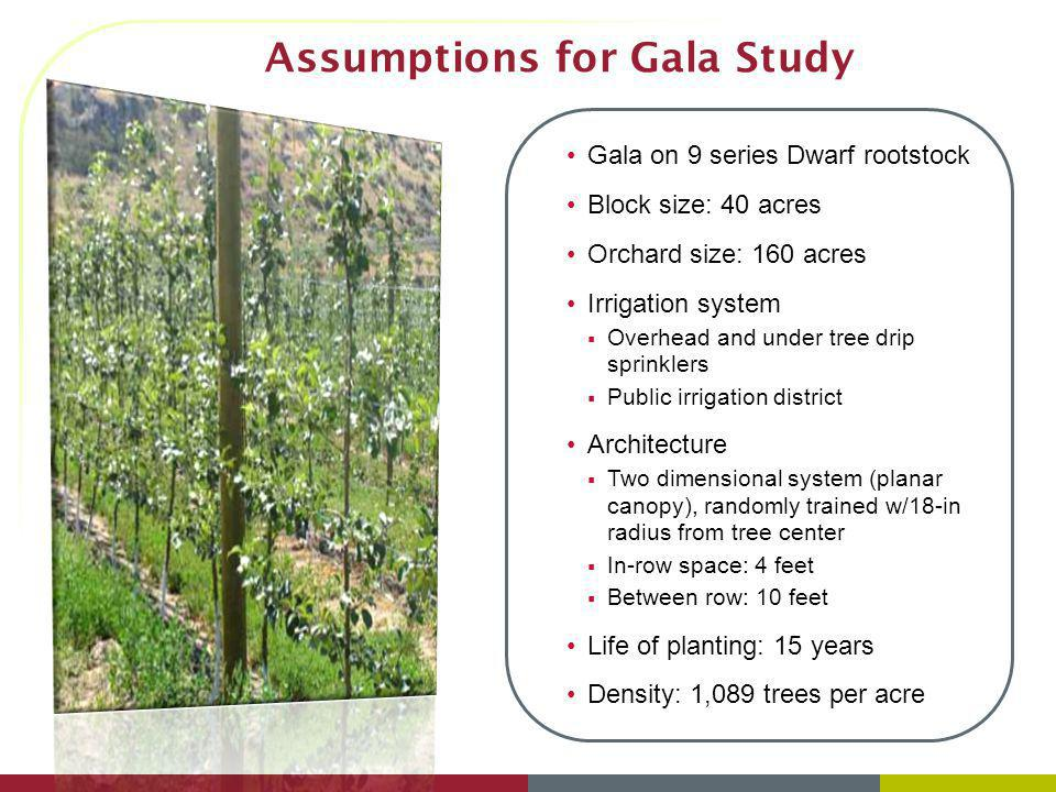 Assumptions for Gala Study