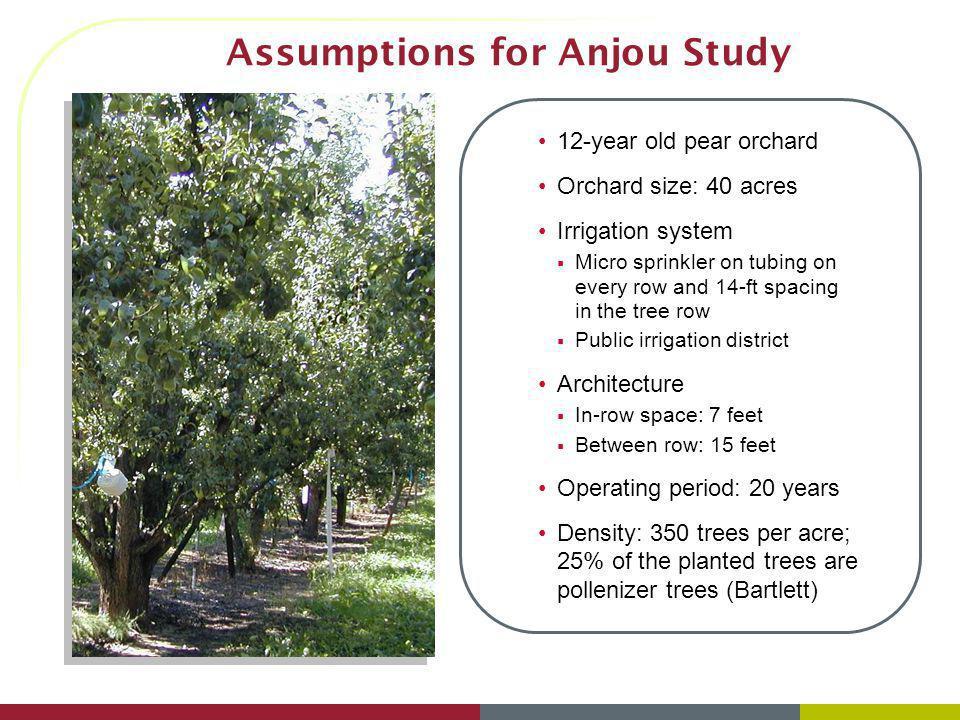 Assumptions for Anjou Study