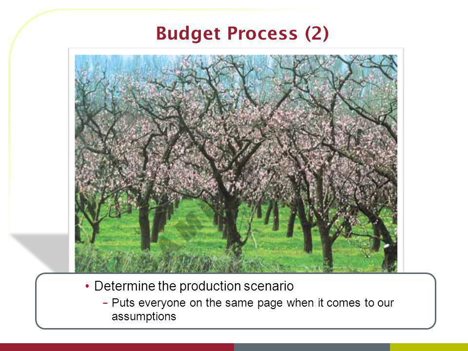 Budget Process (2) Determine the production scenario