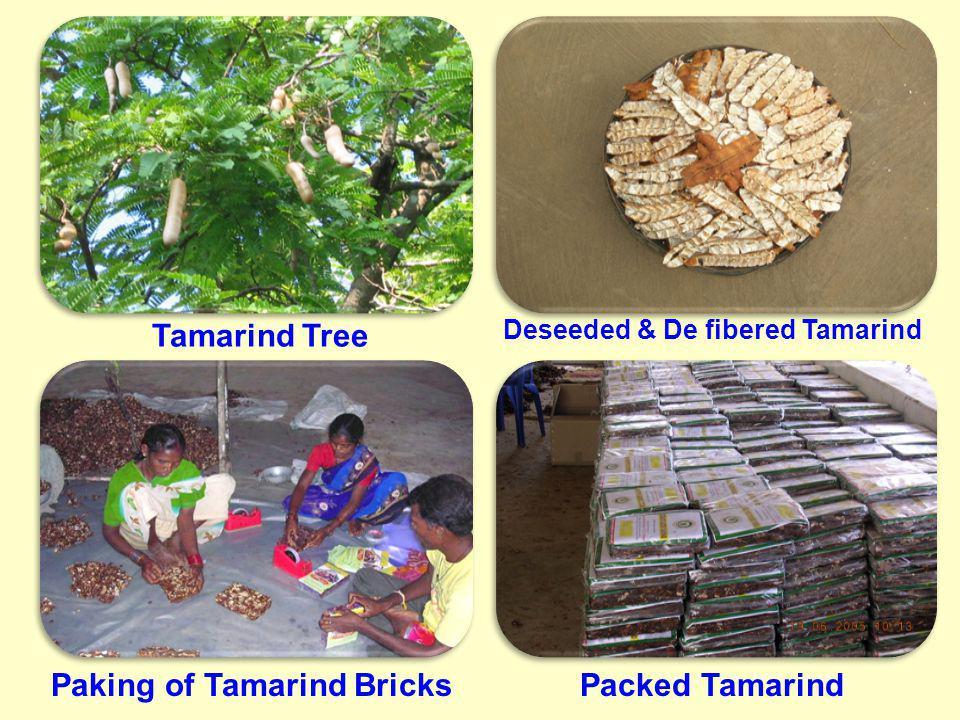 Deseeded & De fibered Tamarind Paking of Tamarind Bricks
