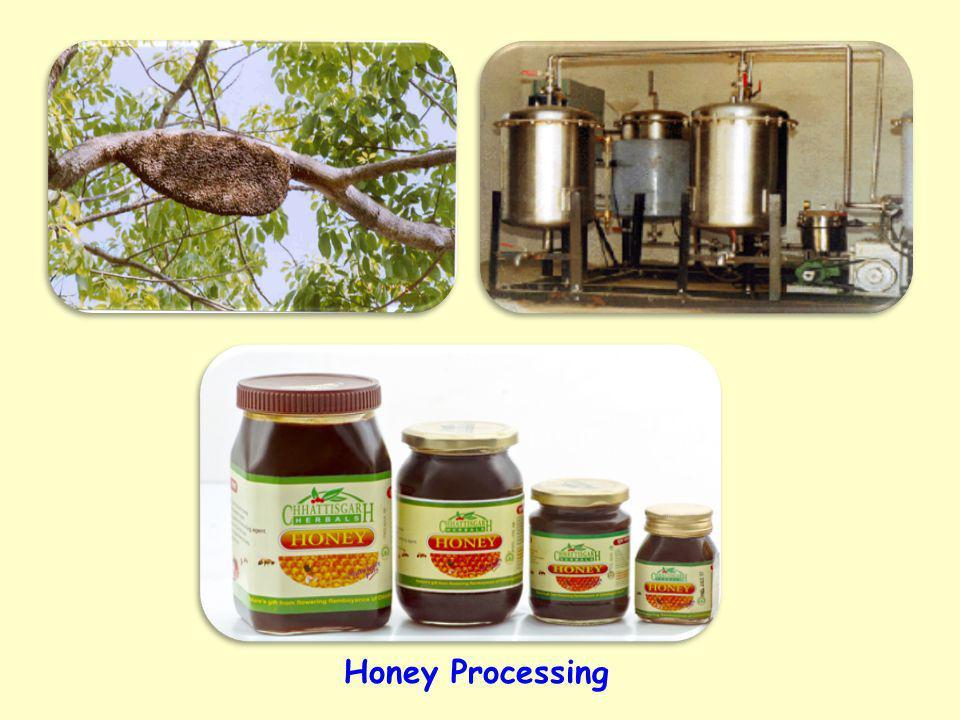 Honey Processing