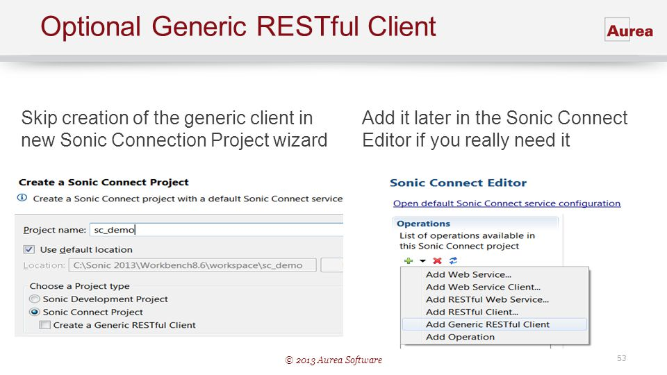 Optional Generic RESTful Client
