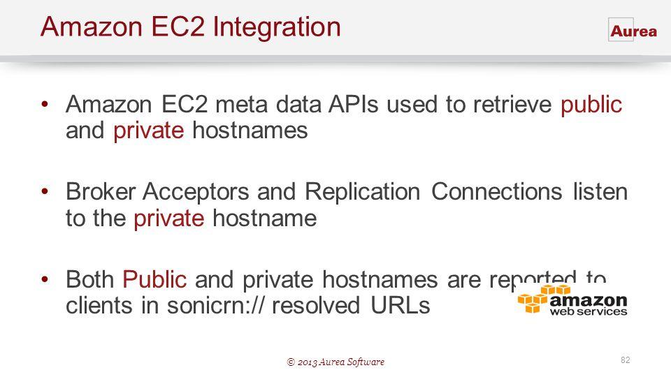 Amazon EC2 Integration Amazon EC2 meta data APIs used to retrieve public and private hostnames.