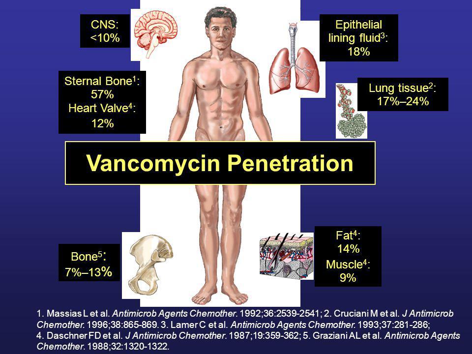 Vancomycin Penetration