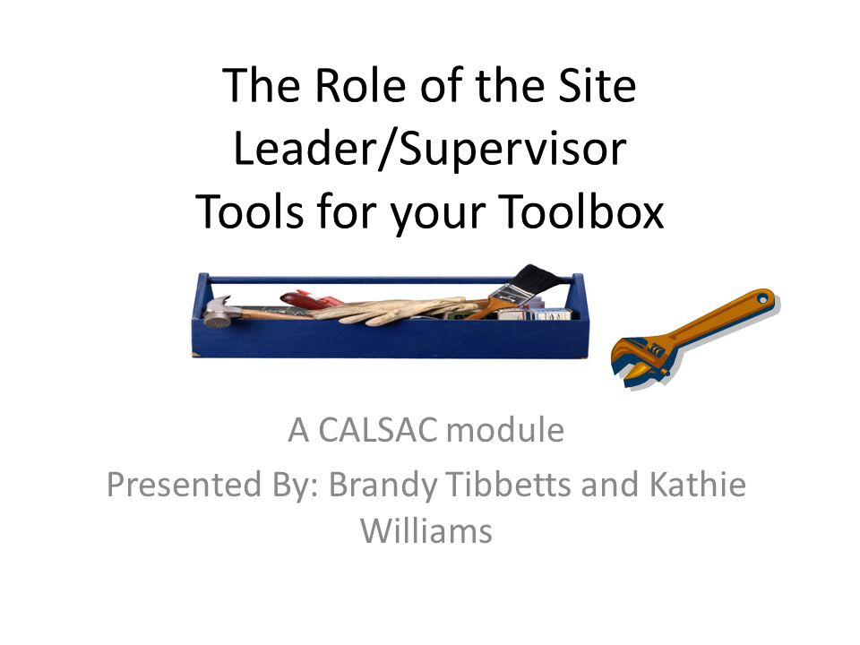 The Role of the Site Leader/Supervisor Tools for your Toolbox