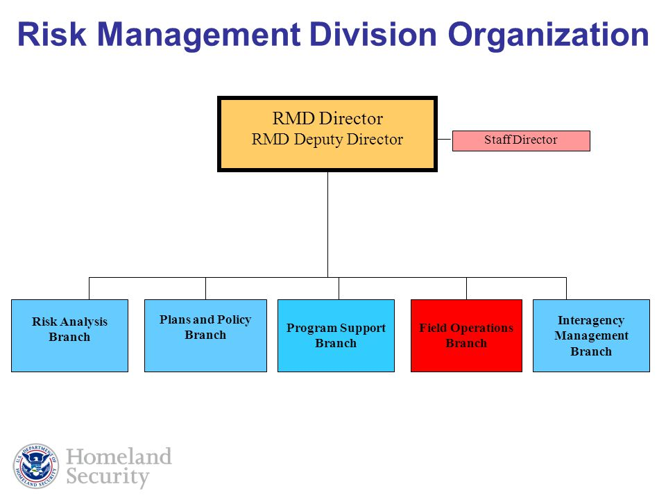 Risk Management Division Organization