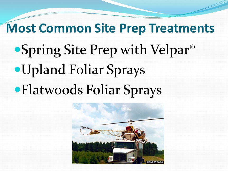Most Common Site Prep Treatments