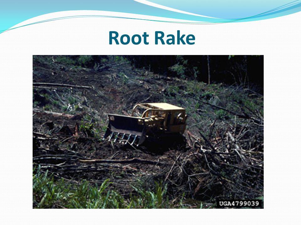 Root Rake