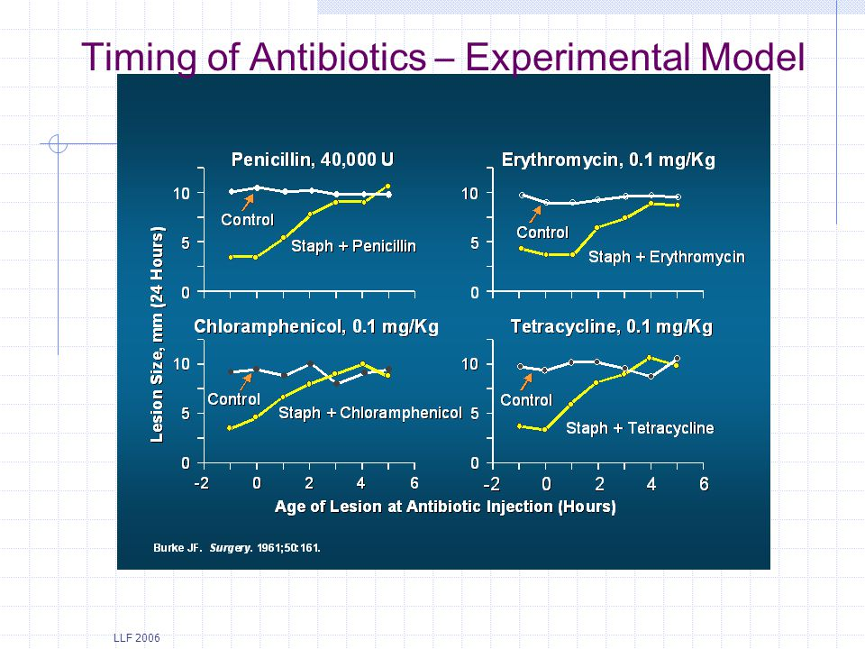 Timing of Antibiotics – Experimental Model