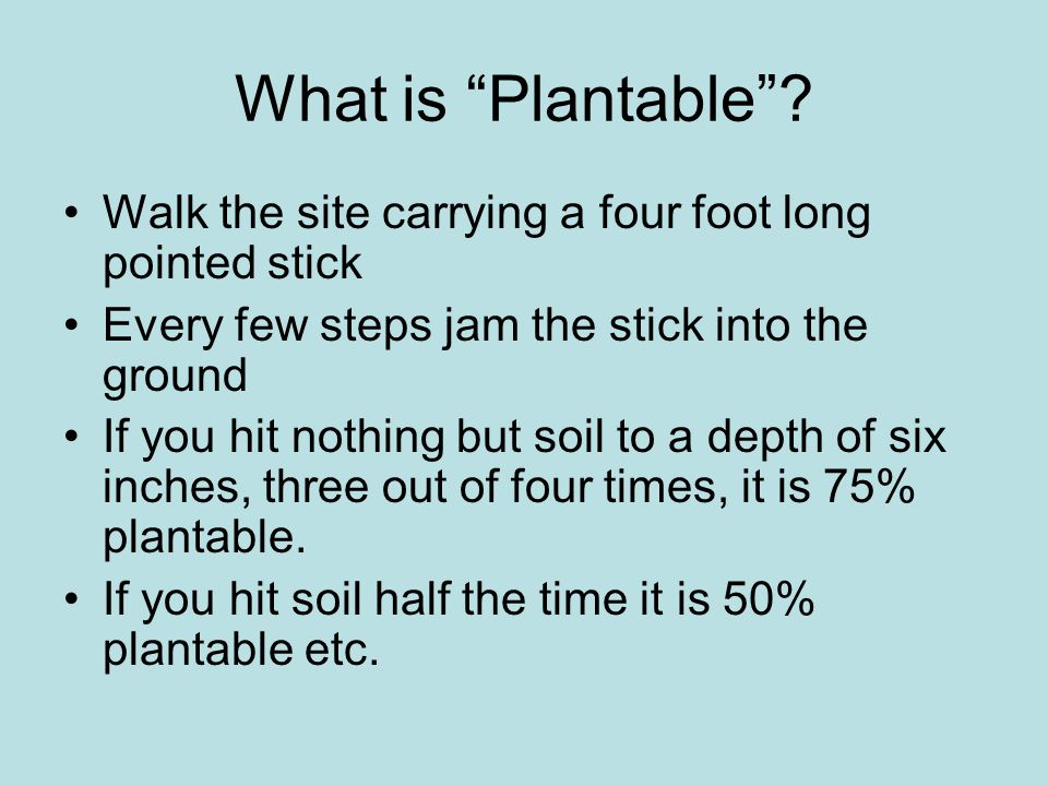 What is Plantable Walk the site carrying a four foot long pointed stick. Every few steps jam the stick into the ground.