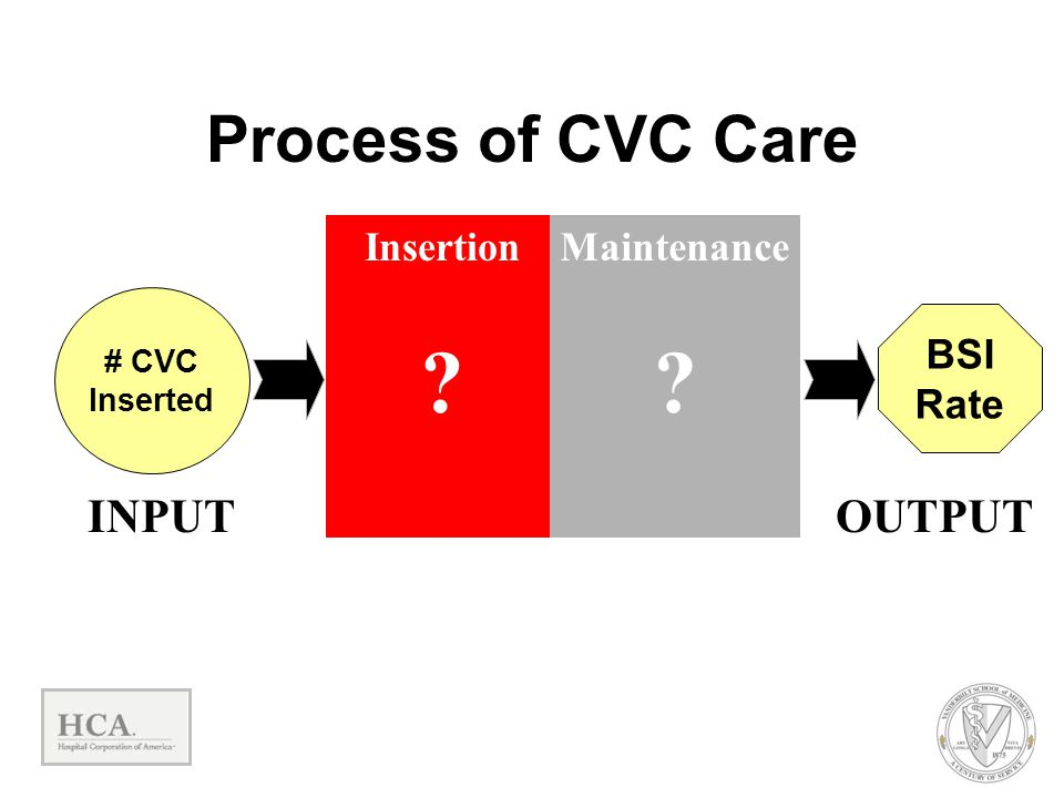Process of CVC Care INPUT OUTPUT Insertion Maintenance BSI Rate