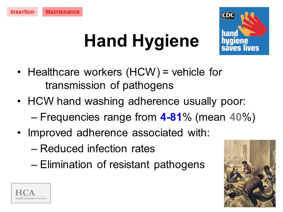 Insertion Maintenance. Hand Hygiene. Healthcare workers (HCW) = vehicle for transmission of pathogens.