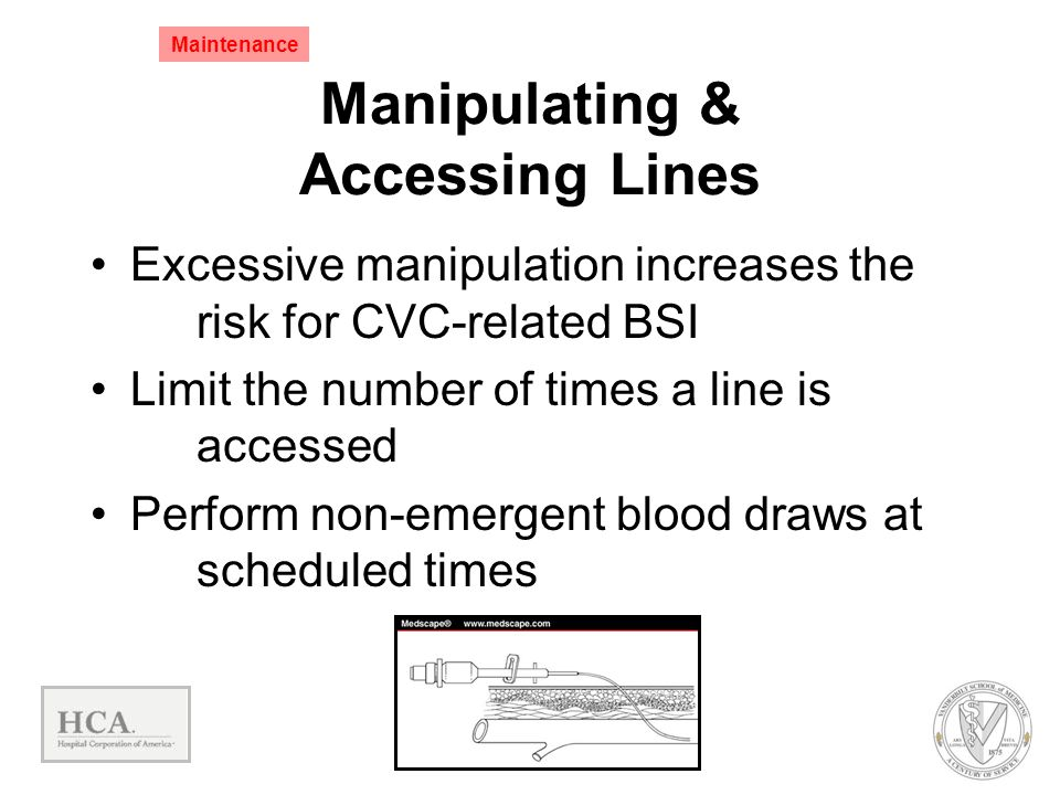 Manipulating & Accessing Lines