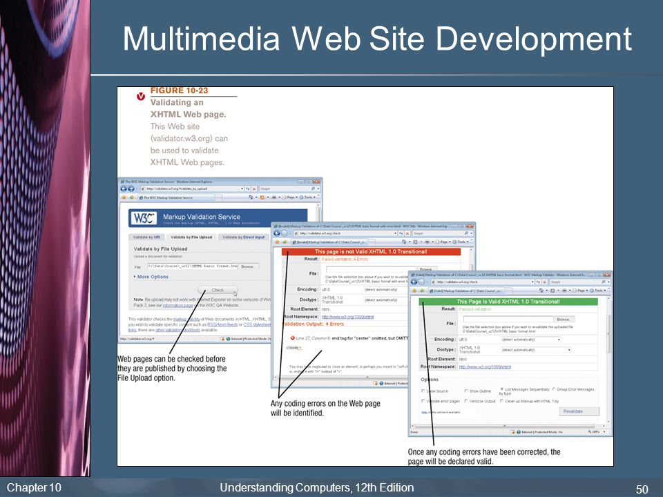 Multimedia Web Site Development