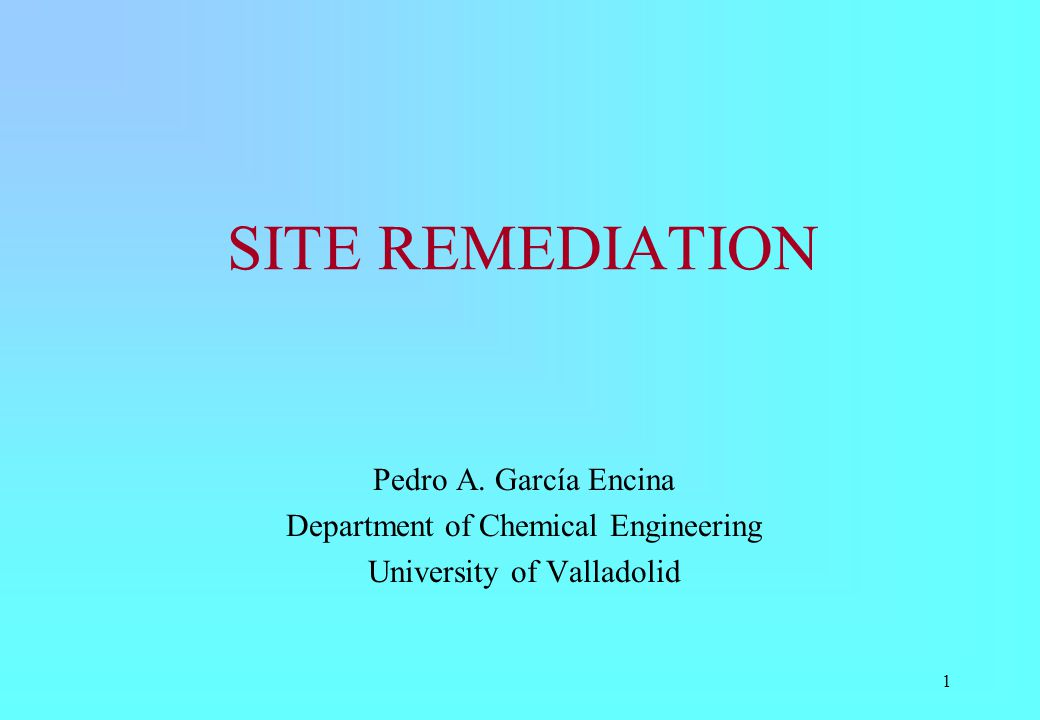 SITE REMEDIATION Pedro A. García Encina