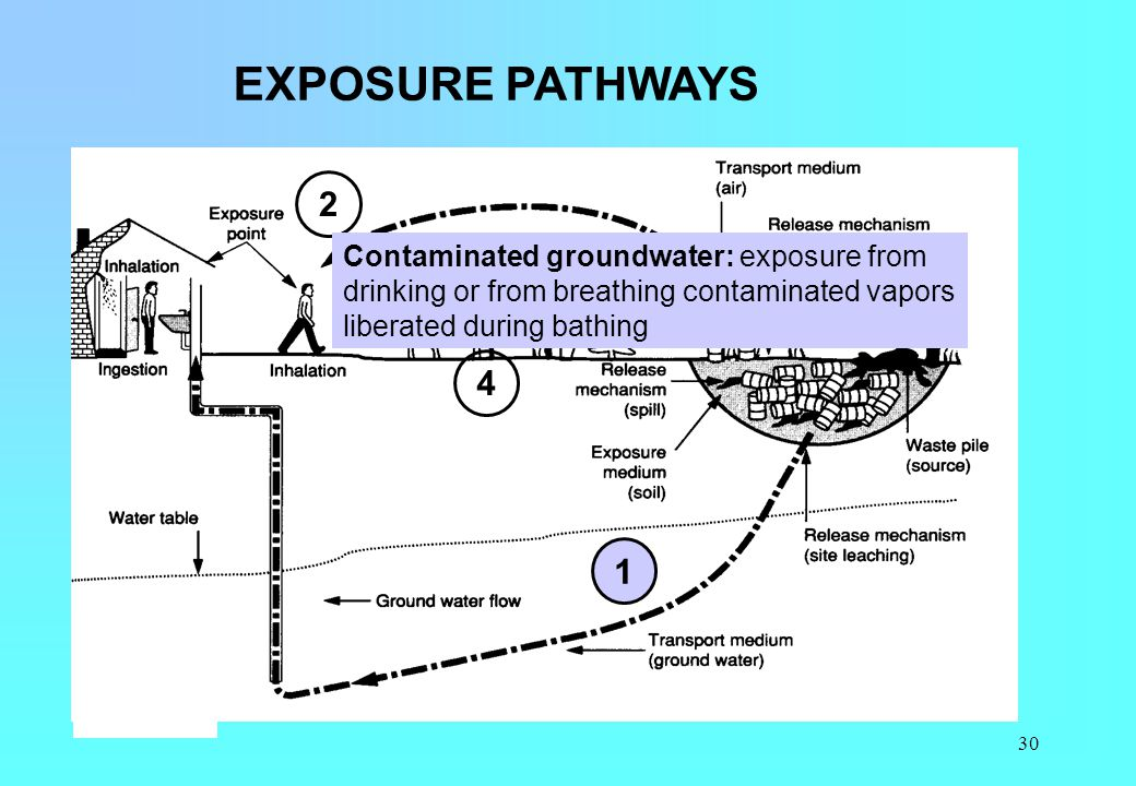 EXPOSURE PATHWAYS 2. Contaminated groundwater: exposure from drinking or from breathing contaminated vapors liberated during bathing.