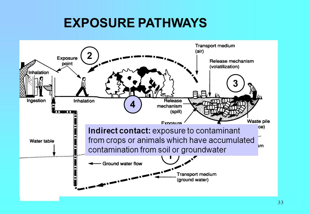 EXPOSURE PATHWAYS 2. 3. 4.