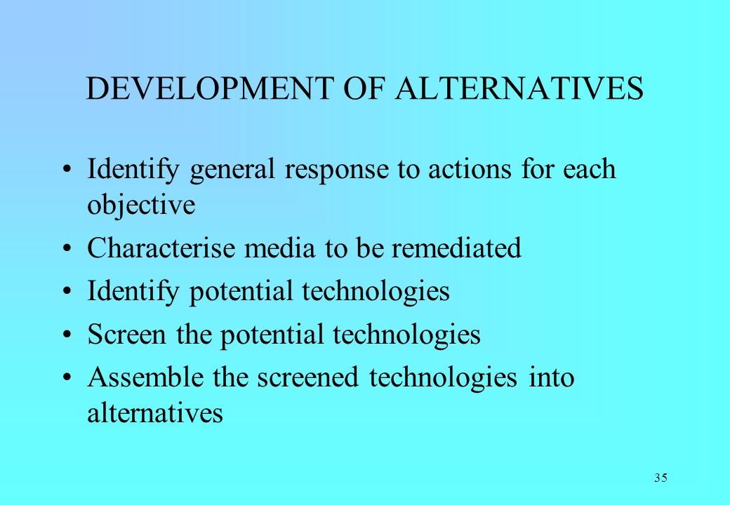 DEVELOPMENT OF ALTERNATIVES