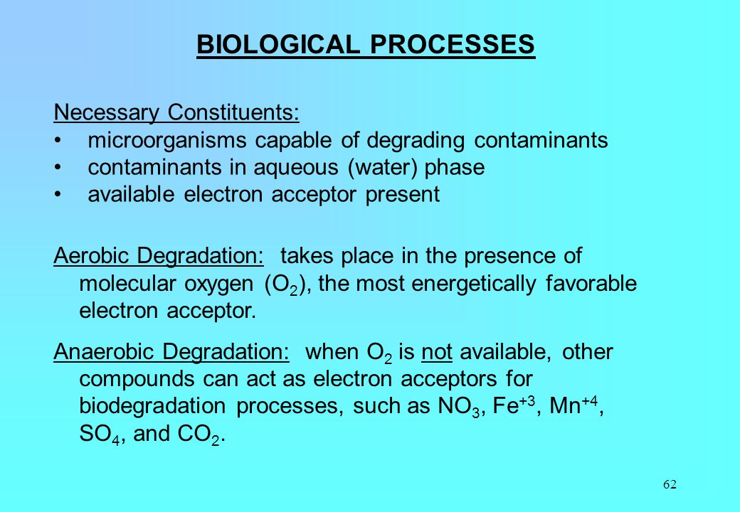 BIOLOGICAL PROCESSES Necessary Constituents: