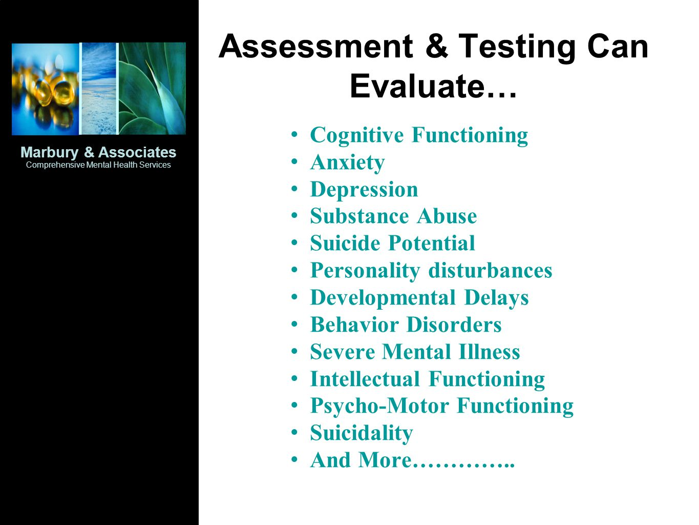 Assessment & Testing Can Evaluate…