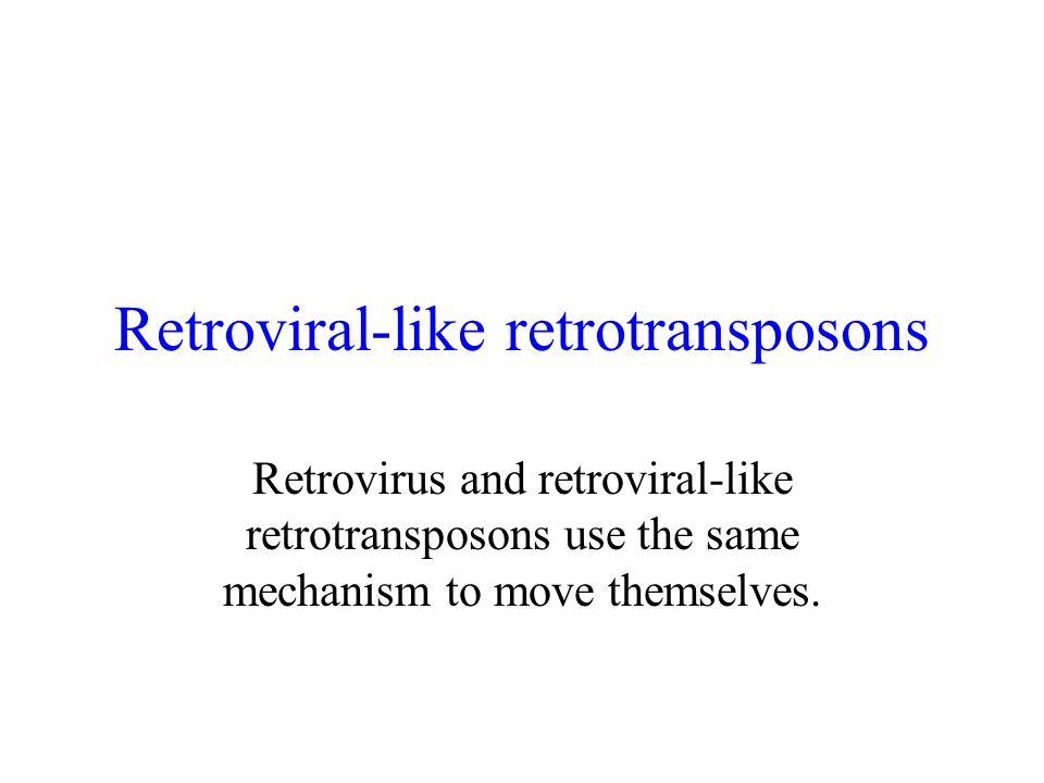 Retroviral-like retrotransposons