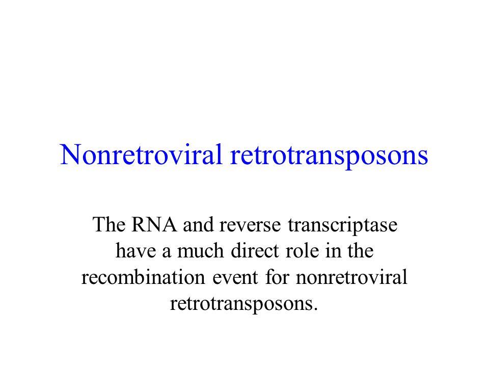 Nonretroviral retrotransposons