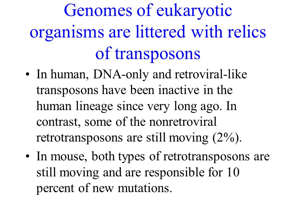 Genomes of eukaryotic organisms are littered with relics of transposons