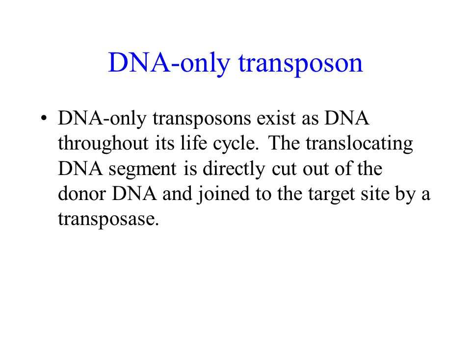 DNA-only transposon