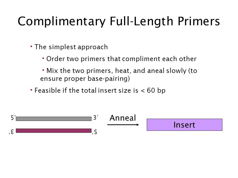Complimentary Full-Length Primers