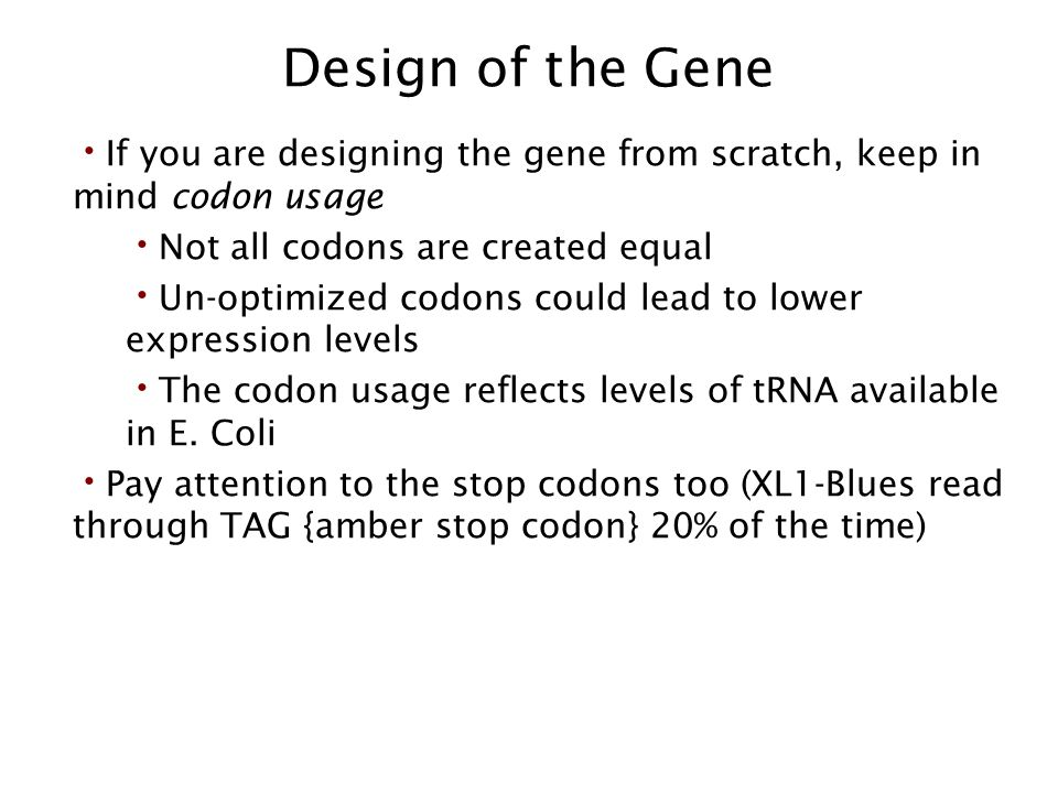 Design of the Gene If you are designing the gene from scratch, keep in mind codon usage. Not all codons are created equal.