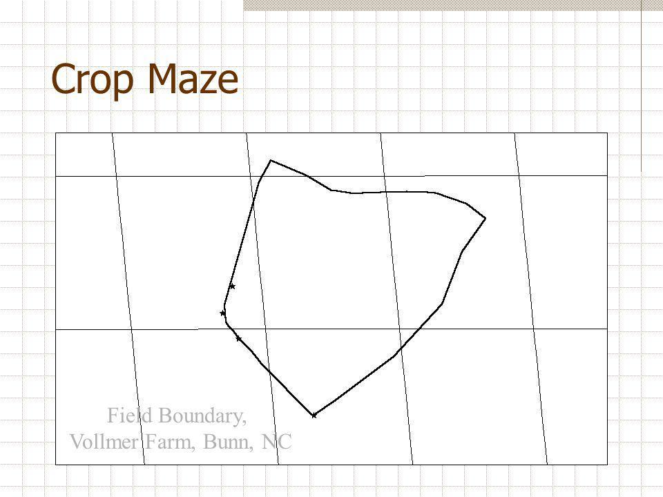 Crop Maze Field Boundary, Vollmer Farm, Bunn, NC