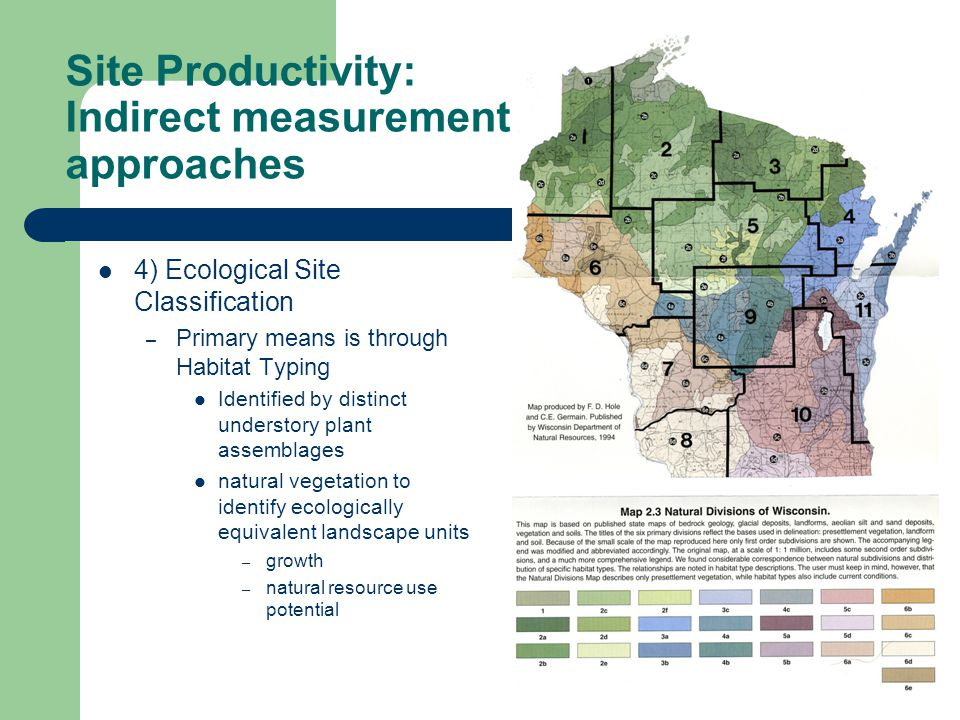 Site Productivity: Indirect measurement approaches