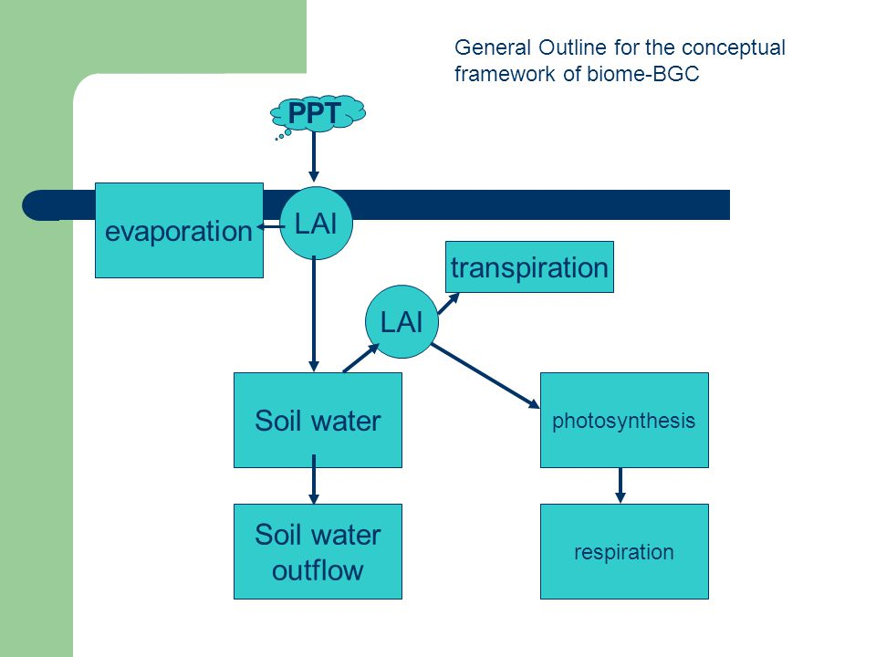 PPT evaporation LAI transpiration LAI Soil water Soil water outflow