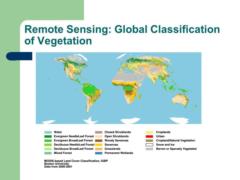 Remote Sensing: Global Classification of Vegetation