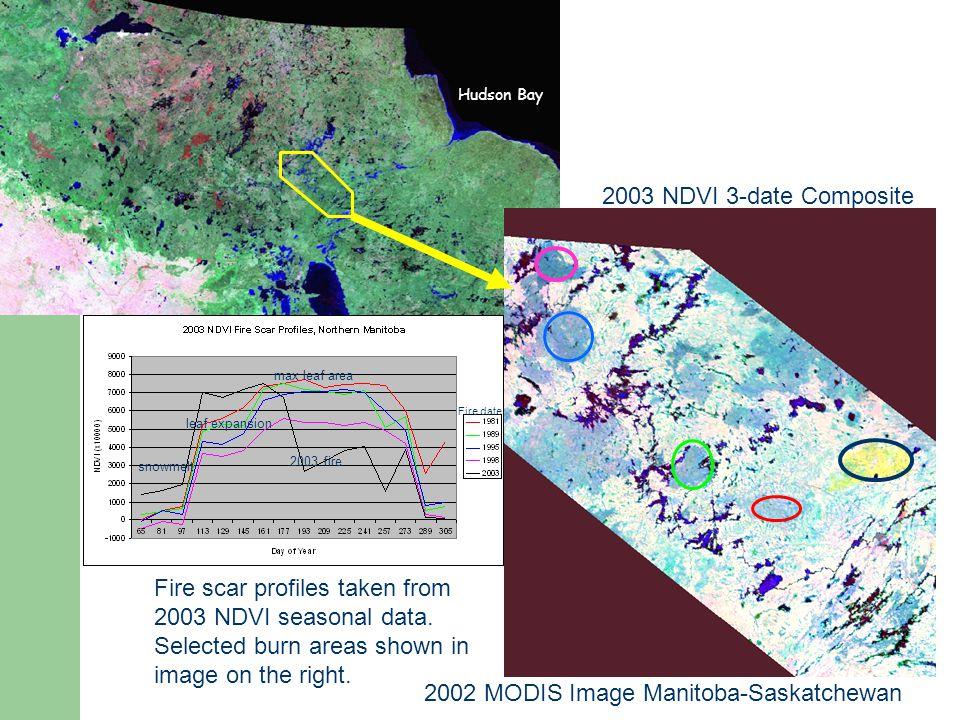 Fire scar profiles taken from 2003 NDVI seasonal data.